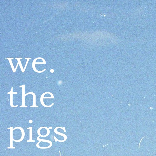 We. The Pigs